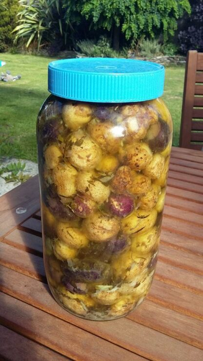 preserved new potatoes in olive oil