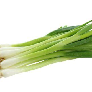 Organic Spring Onions